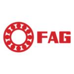 fag_1